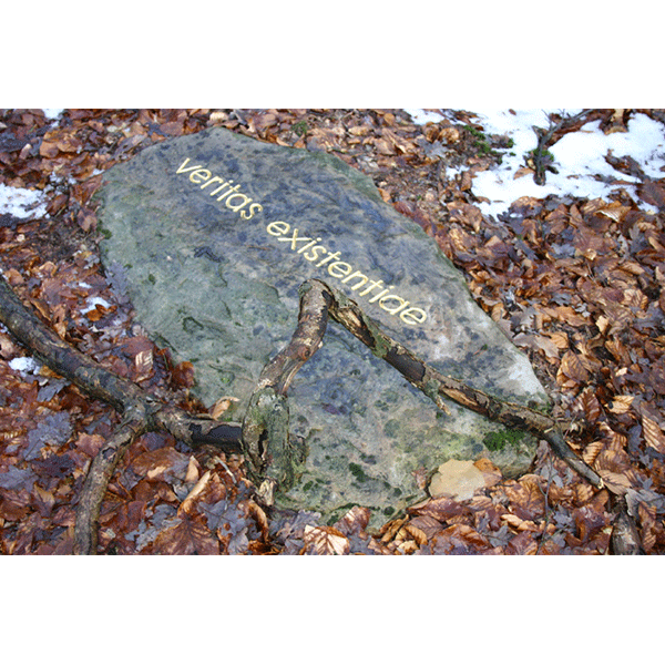 herman de vries<br/>trace: veritas existentiae (steigerwald), 2006, text in gold leaf on rock