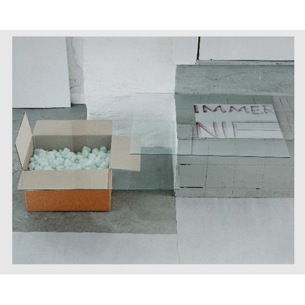 MONIKA BRANDMEIER<br/>immernie #4 (Karton mit Grün), 2001, c-print 47,5 x 58 cm, ed. 5