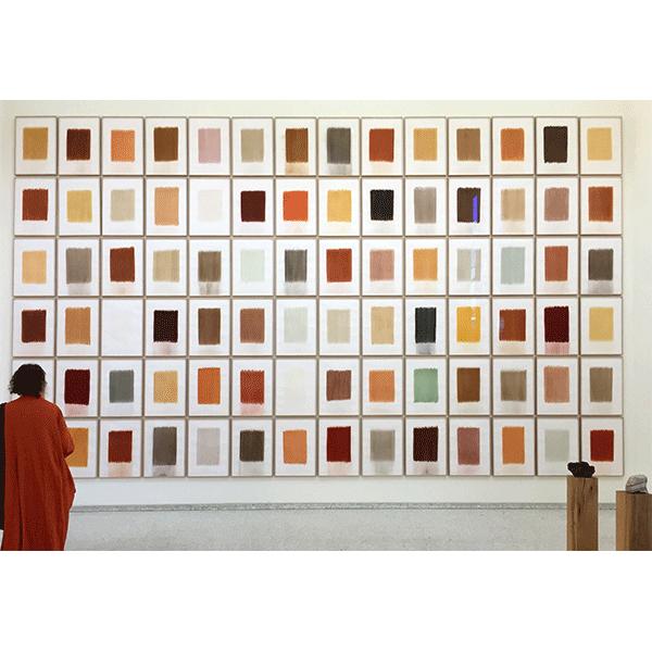 herman de vries<br/>Venice Biennale, 2015