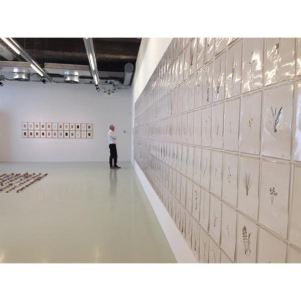 herman de vries<br/>Museum Schiedam, NL, 2015