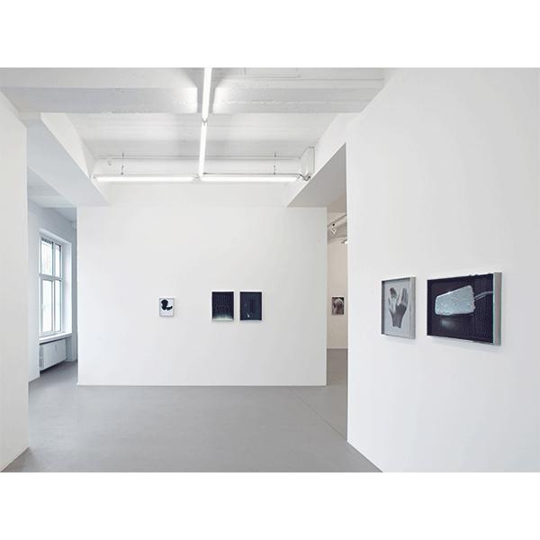 ANNA VOGEL<br/>CONRADS, 2015