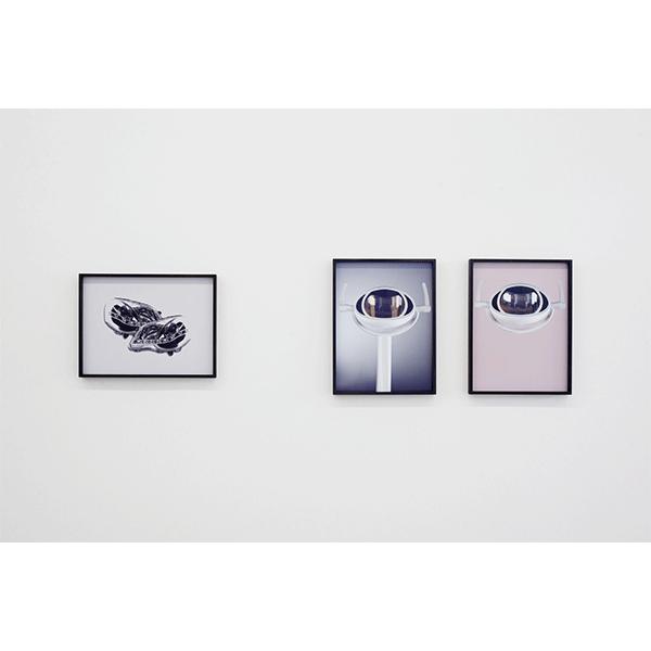 ANNA VOGEL<br/>CONRADS, 2016