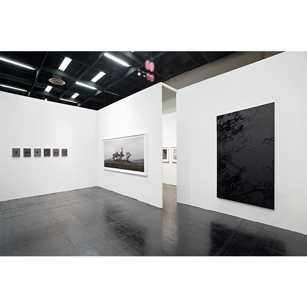 ROSEMARY LAING<br/>CONRADS, ART COLOGNE 2016