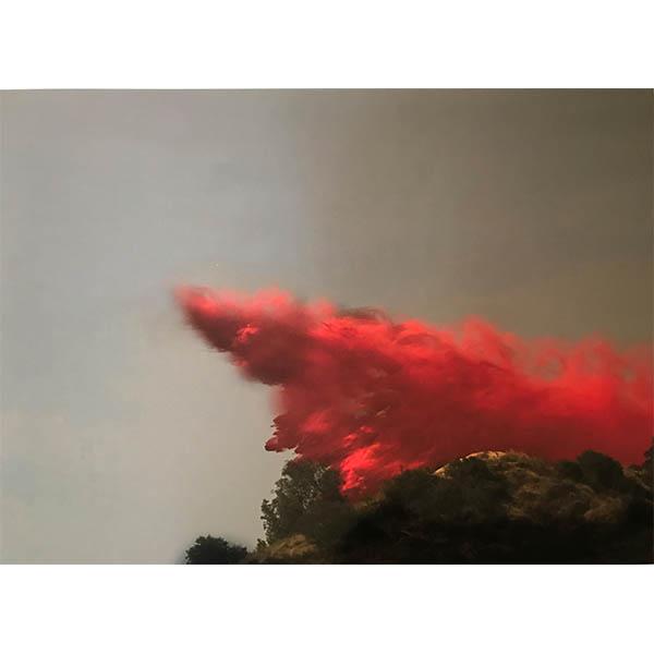 ANNA VOGEL</br> Ignifer, 2018, pigment print, 38,5 x 29 cm, ed. 10