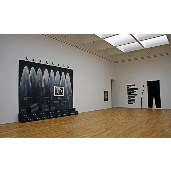 JANA GUNSTHEIMER<br/>Kunstmuseum Bonn 2008