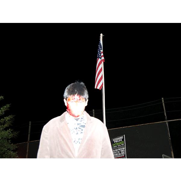 JOSCHA STEFFENS<br/>POTU-Flag Zombie, 2014, 72 x 54 cm