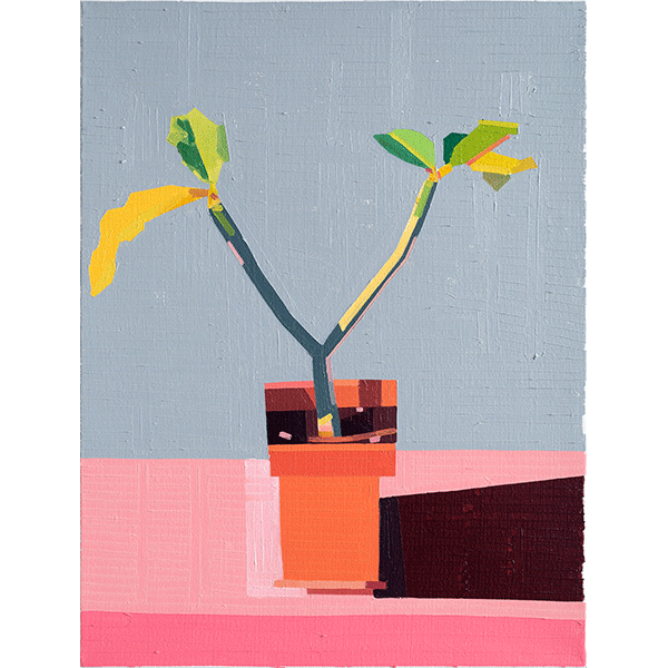 GUY YANAI<br />Plant on Roof, 2019, oil on linen, 84 x 64 cm