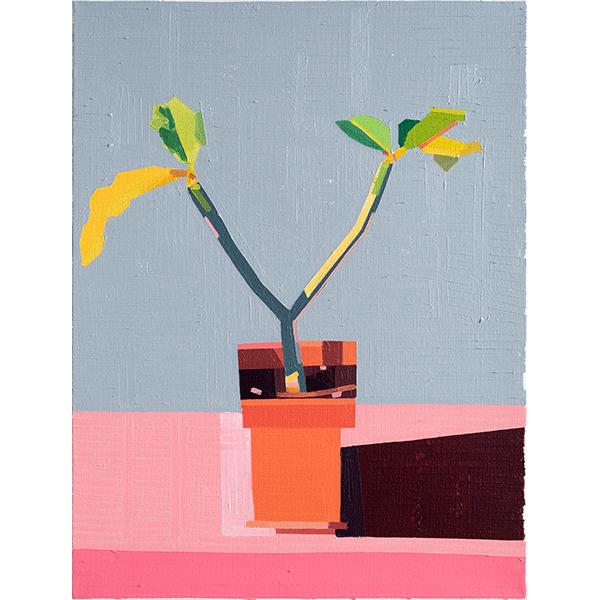 GUY YANAI<br />Plant on Roof, 2019, oil on linen, 84 x 64 cm