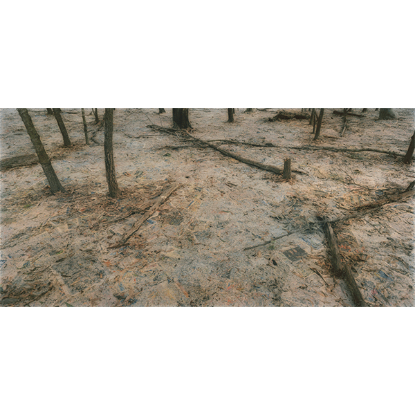 ROSEMARY LAING<br/>The Paper: Thursday, 2014, hand-printed, hand-coloured photograph, 284,5 × 551,2 cm, ed. 8