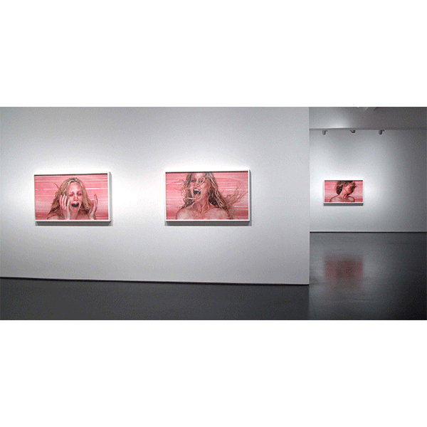 ROSEMARY LAING<br/>Tolarno Galleries, 2009