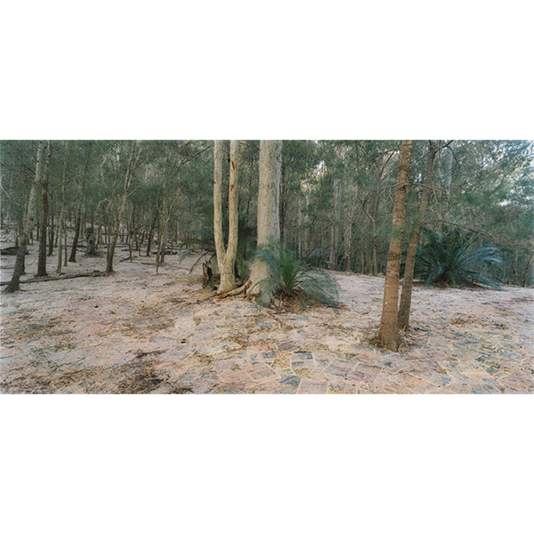 ROSEMARY LAING<br/>The Paper: Tuesday, 2014, hand-printed, hand-coloured photograph, 284,5 × 551,2 cm, ed. 8