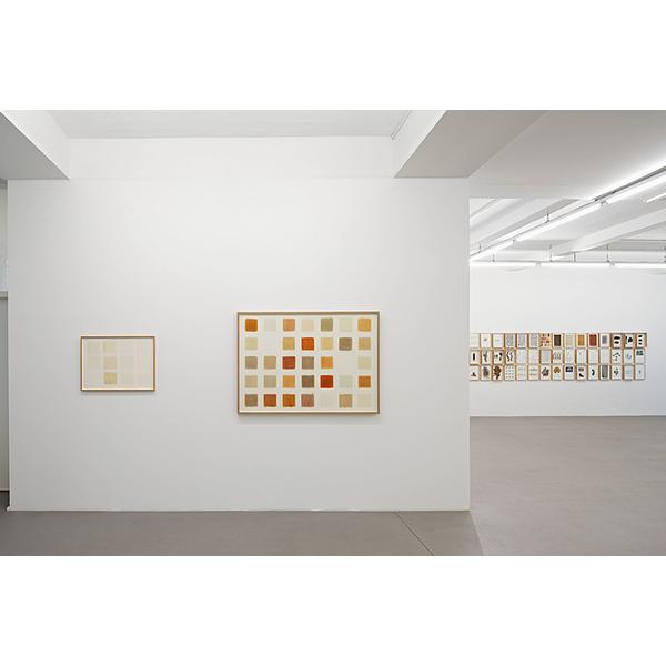 herman de vries<br /> installation view, Gallery CONRADS, 2017