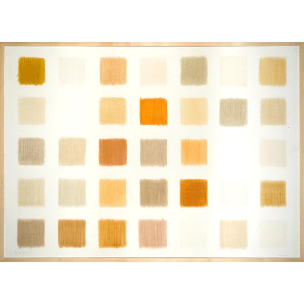 herman de vries<br/>from earth: türkiye, 1990, earth pigments, 103 x 143 cm