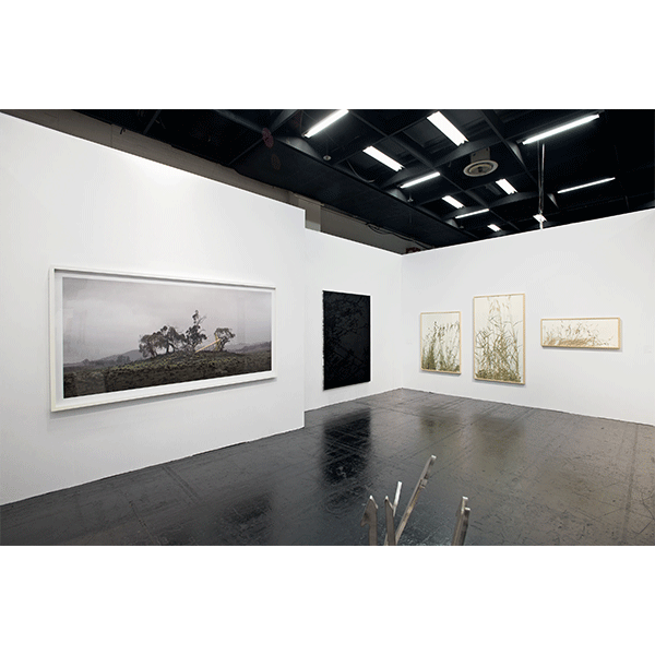 herman de vries<br/>CONRADS, ART COLOGNE 2016