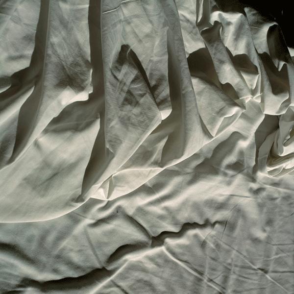 SASCHA WEIDNER<br/>Laken II, 2008, pigment print, 80 x 80 cm, ed. 5